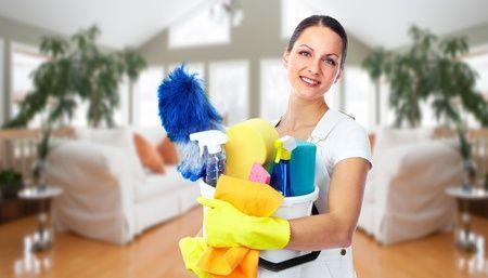 Creer Une Entreprise De Nettoyage A Domicile