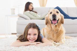 services a domicile animaux