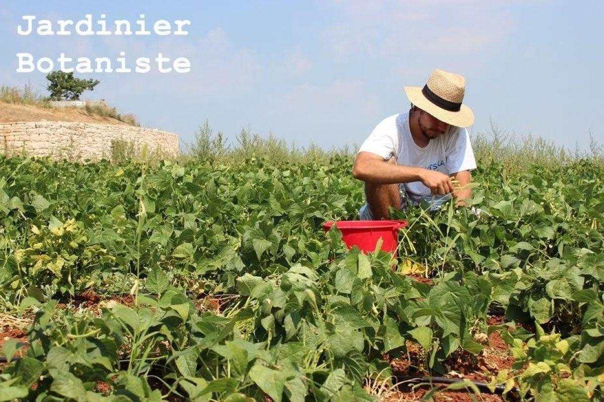 Trouver Un Jardinier A Domicile comment devenir jardinier botaniste
