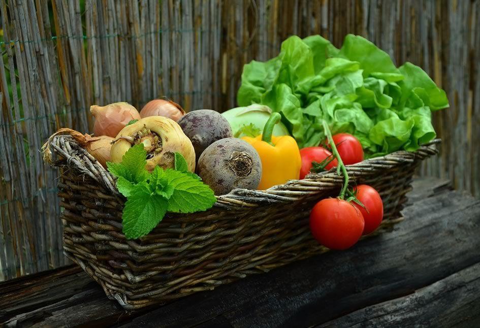 5622017c2d6 Vendre des fruits et légumes frais pour arrondir ses fins de mois