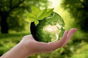 Conseiller en énergie : mettez votre activité au vert