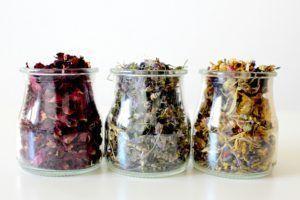 Naturopathe, prendre soin des autres avec les médecines douces