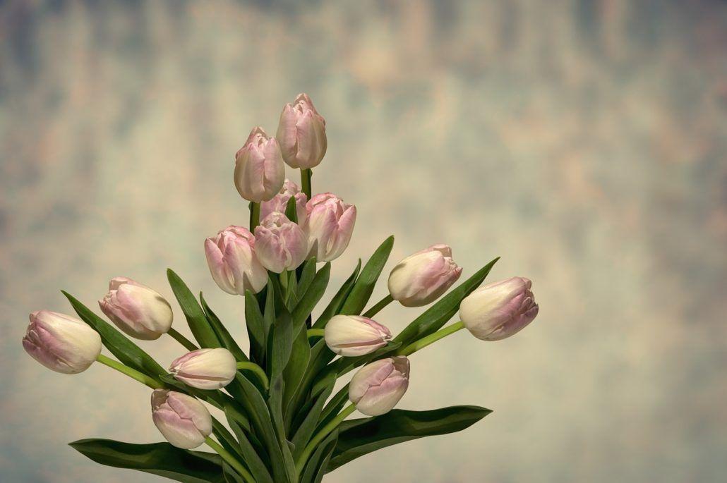 994bada09056dc Qui n aimerait pas recevoir des fleurs   Internet révolutionne la vente de  fleurs depuis quelques années. En seulement quelques clics vous pouvez  envoyer ...
